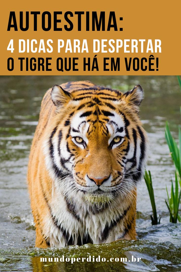Autoestima: 4 Dicas para despertar o tigre que há em você!