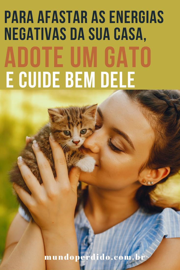 Para afastar as energias negativas da sua casa, adote um gato (e cuide bem dele)