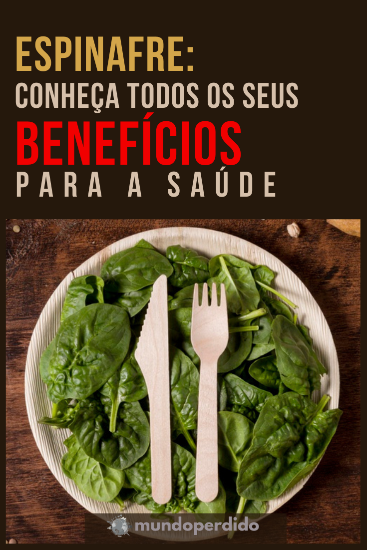 Espinafre: Conheça todos os seus benefícios para a saúde