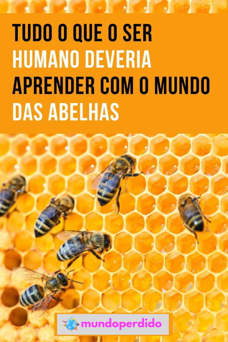 Tudo o que o ser humano deveria aprender com o mundo das abelhas