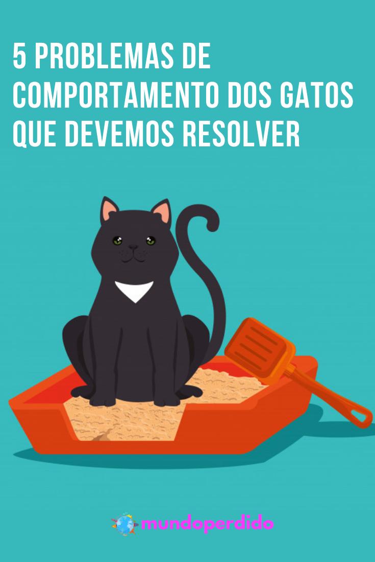 5 Problemas de comportamento dos gatos que devemos resolver