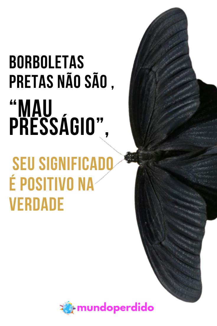 """Borboletas pretas não são """"mau presságio"""", seu significado é positivo na verdade"""