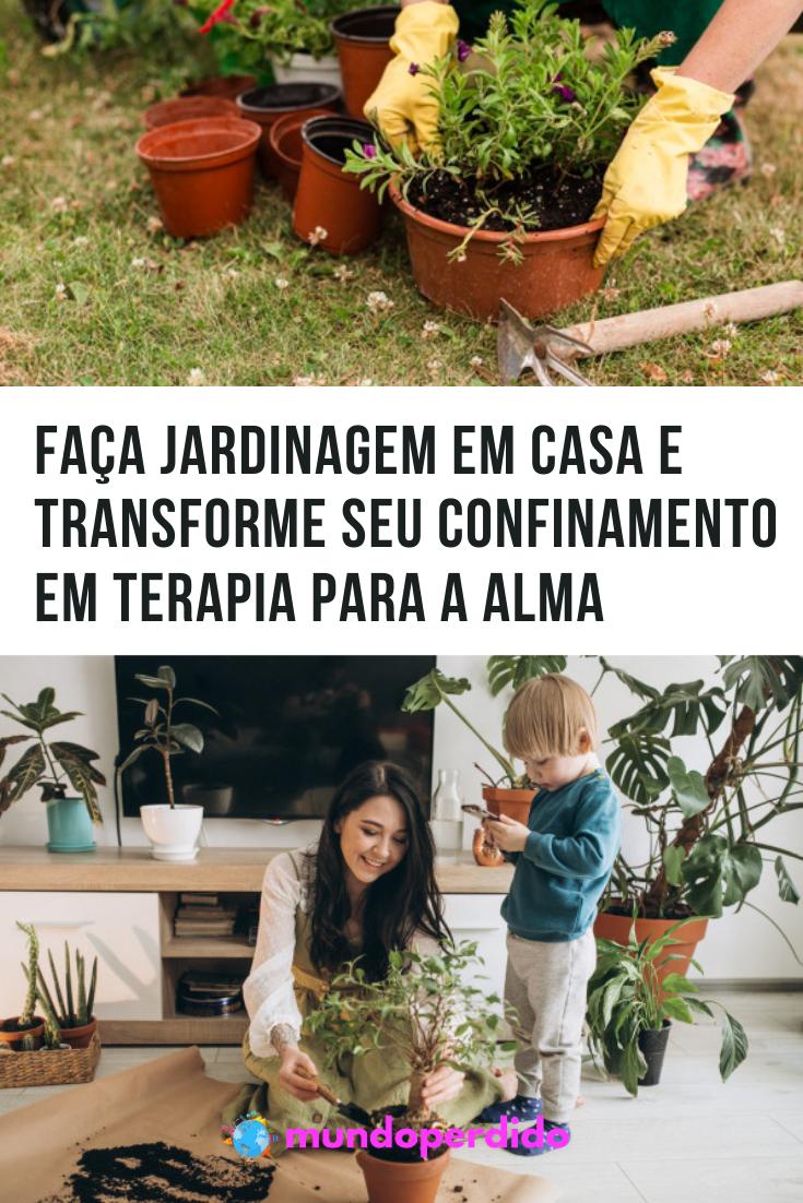 Faça jardinagem em casa e transforme seu confinamento em terapia para a alma