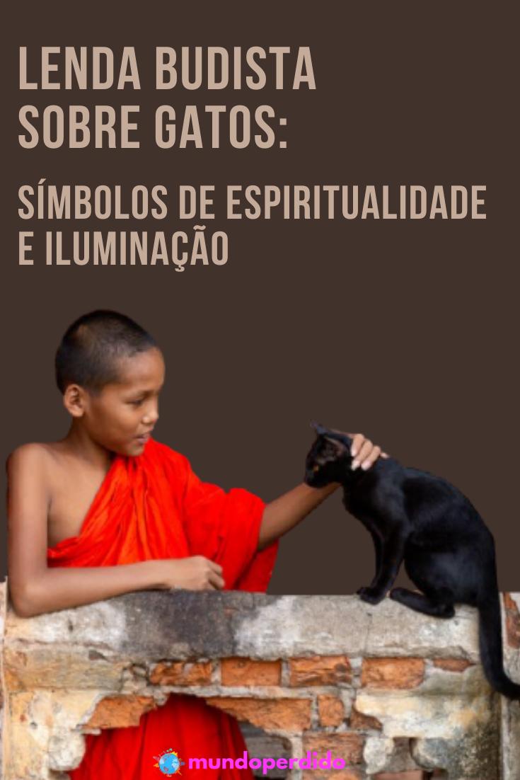 Lenda budista sobre gatos: Símbolos de espiritualidade e iluminação