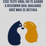 Gato, cachorro ou coelho? Esse teste viral vai te ajudar a descobrir qual qualidade você mais se destaca