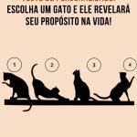 Teste de personalidade: Escolha um gato e ele revelará seu propósito na vida!