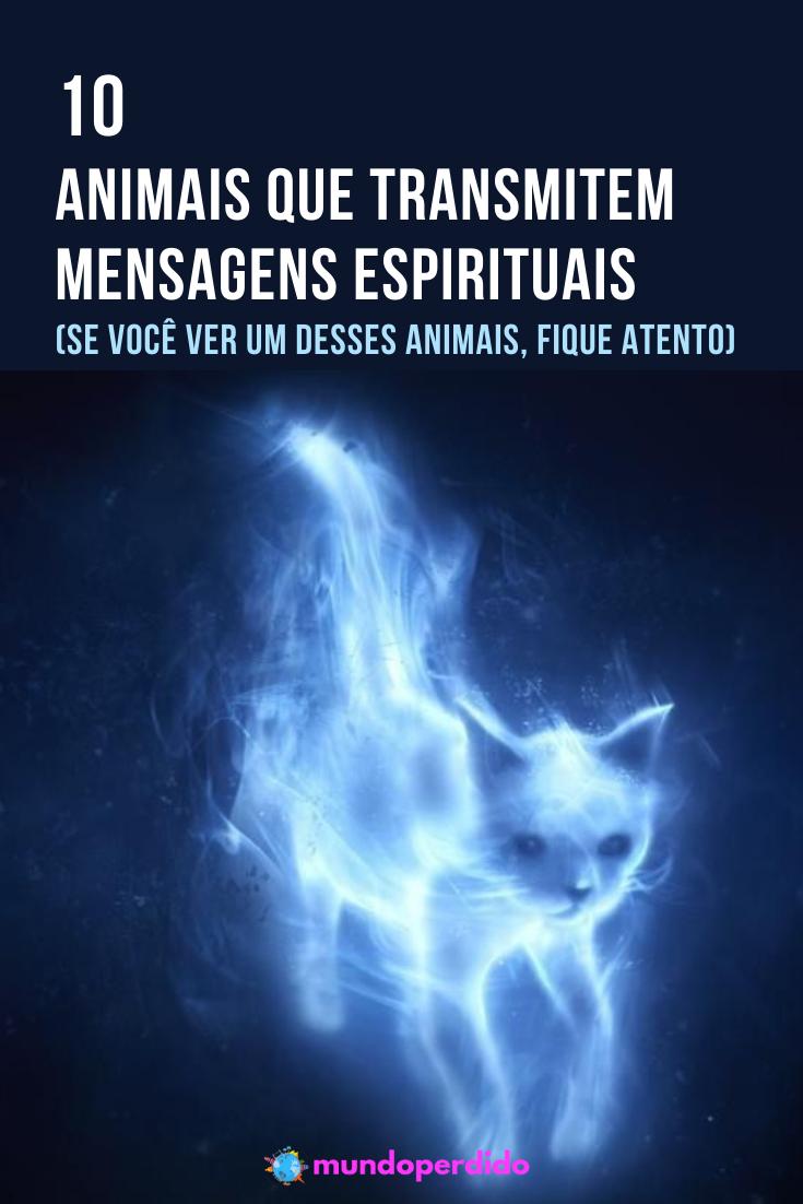 10 Animais que transmitem mensagens espirituais (Se você ver um desses animais, fique atento)