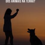 Qual a missão espiritual dos animais na Terra?