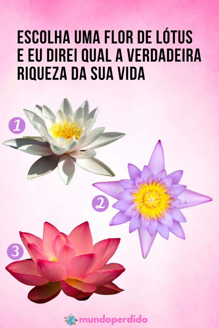Escolha uma flor de lótus e eu direi qual a verdadeira riqueza da sua vida